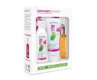 Matrix Biolage Colorcaretherapie For Colour Hair Set
